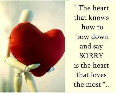 sorry quotes 03 - Quote of the Day *23rd December 2013*