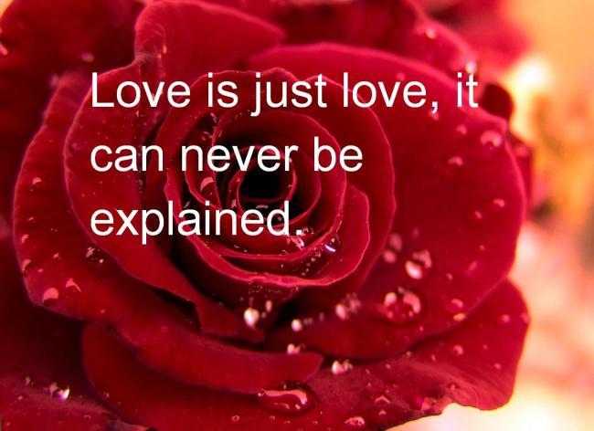 Valentine Day Quotes For Herhim Addictive Blogs