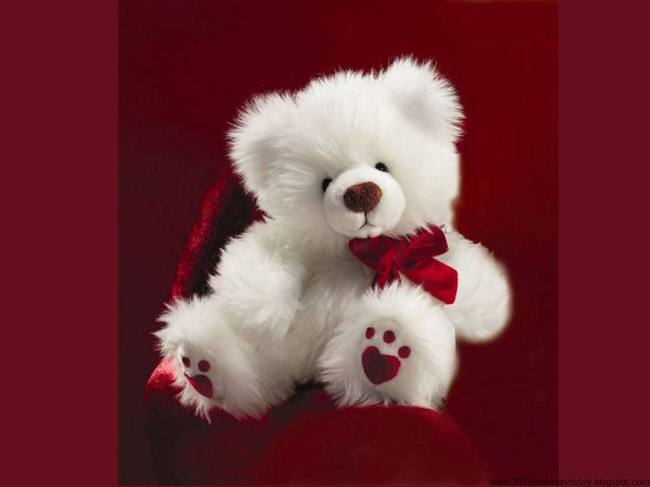 valentine Cute teddy Bear