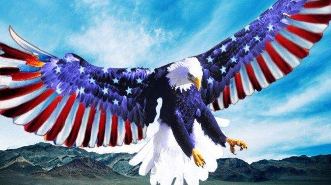 American Bald Eagle Wallpapers Classic Eagles Addictive
